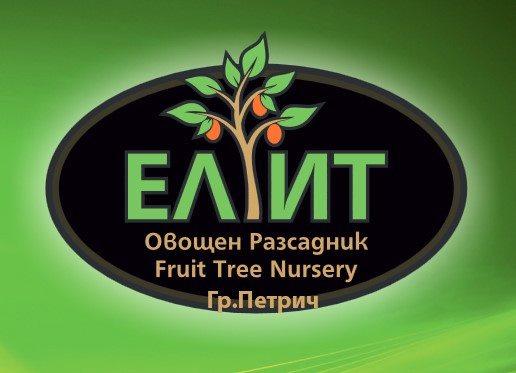 logo-elit.jpg