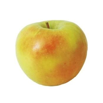 Ябълка Чадел
